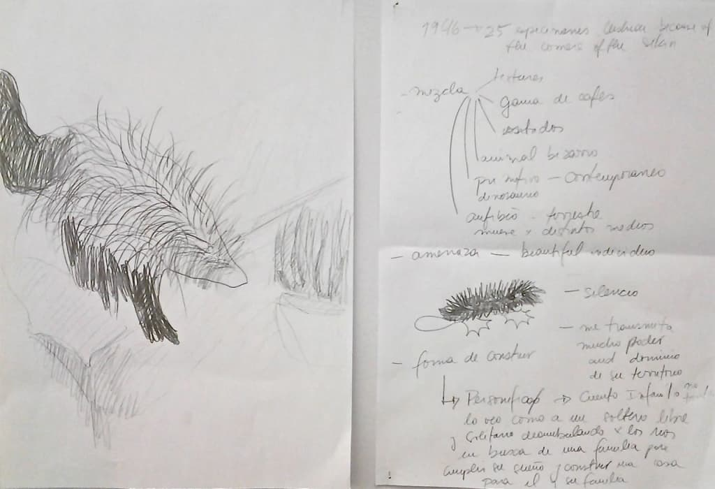 Beyond the End, Kadist Art Foundation, 2014. Study sketches, documents section