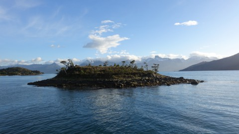 tiny island in the fjords of Tierra del Fuego with snow-capped mountains in the background